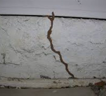 termite-inspections-and-treatments2